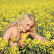 Stock Photo: Woman in a field of wildflowers.