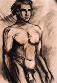 Studies of naked man torso — Stock Photo